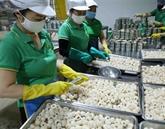 Construire les chaînes de valeur pour les produits agricoles d'exportation