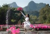 Hanoï : le district suburbain de My Duc développe le tourisme vert