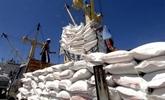 Les prix à l'exportation du riz vietnamien en hausse au cours des neuf derniers mois
