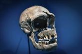 L'ADN hérité de Neandertal peut aggraver des formes de COVID-19