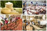 Exportations de produits agricoles, sylvicoles et aquatiques en hausse de 1,6% en neuf mois