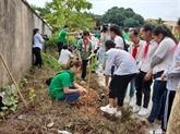 Au moins 4.000 arbres pour améliorer l'atmosphère de Hanoï