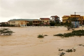 Des Vietnamiens en Australie et au Canada soutiennent des sinistrés au Centre