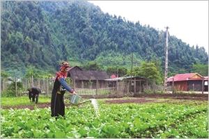 À Diên Biên Muong Nhé à lassaut de la pauvreté