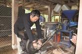 La réussite économique exemplaire de Po Dân Sinh