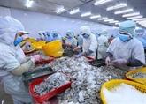 Les exportations nationales de crevettes bondissent en septembre