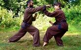 Son Long Quyên Thuât, d'une discipline martiale à une philosophie de vie