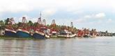 Cà Mau s'efforce d'empêcher les activités de pêche illicite