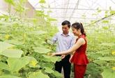 Bac Ninh : un exemple de développement agricole et rural durable