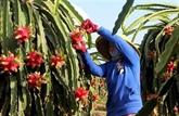 Les exportations nationales en hausse de 4,7% en dix mois