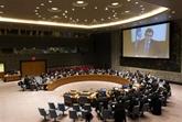 Le Vietnam préoccupé par la situation du plateau du Golan