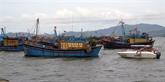 Le Vietnam poursuit l'objectif de développer durablement la pêche