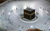 Arabie saoudite: reprise limitée du petit pèlerinage musulman