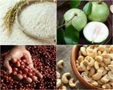 Affirmer la qualité des produits agricoles vietnamiens