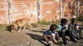 La pandémie précipite au moins 88 millions de personnes dans l'extrême pauvreté