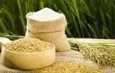Le riz vietnamien arrive à maturité sur le marché mondial