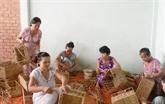 Un projet financé par les Pays-Bas aide les femmes de Binh Thuân dans la production agricole