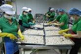 Les exportations de fruits et légumes chutent de 11% en neuf mois