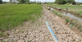 Les États-Unis assistent An Giang dans la résilience à la sécheresse et à l'intrusion saline