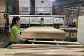 Promouvoir la conformité du système de garantie de la légalité du bois