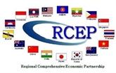 L'importance du RCEP pour les économies