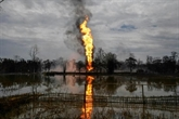 Inde : l'incendie gigantesque d'un puits de pétrole éteint après plus de cinq mois