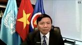 Conseil de sécurité : le Vietnam appelle à poursuivre les aides en faveur du Liban