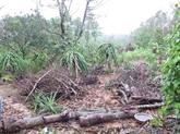 La production agricole reprend dans les régions sinistrées
