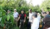 Nestlé inaugure un centre d'expérience de ferme de café à Dak Lak