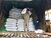 Le gouvernement fournit du riz aux provinces sinistrées du Centre