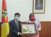 Le Mozambique félicite le Vietnam pour son double rôle en 2020