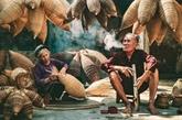 La vie quotidienne et la culture vietnamiennes en images