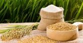 Le riz reste un point positif dans le tableau des exportations