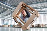 Les ventes de bois et de produits sylvicoles atteignent 11,7 mds d'USD