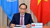 Le Vietnam au débat ouvert virtuel de haut niveau du Conseil de sécurité de l'ONU