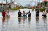 Le Camboge distribuera plus de 5.000 tonnes de semences de riz aux sinistrés