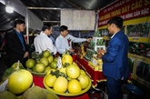 Ouverture de la Semaine des oranges de Cao Phong 2020
