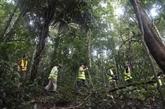 Cambodge : 25 millions d'USD générés par l'écotourisme en neuf mois
