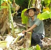 Les jardins-forêts, la passion d'un jeune Vietnamien