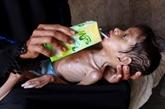 Conseil de sécurité : le Vietnam appelle à enrayer la famine au Yémen