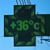 Réchauffement : 2020 année record annoncée en France