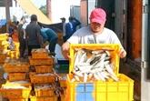 Dialogue sur la responsabilité sociale dans le secteur de la pêche