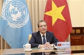 Le Vietnam promeut une coopération pratique et efficace avec le Moyen-Orient et l'Afrique