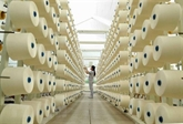 Renforcement de la coopération Vietnam - Inde dans le secteur du textile