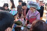 Nouvel An : activités au Village culturel et touristique des ethnies du Vietnam