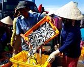 Les exportations de produits agricoles, sylvicoles et aquatiques en hausse