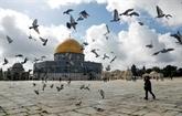 À Jérusalem, un premier vendredi de prière plutôt calme depuis le plan Trump