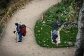 Plus de 3.550 sans-abri recensés fin janvier à Paris, selon la Mairie