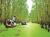 Trà Su : bienvenue dans le paradis vert !