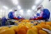 LEVFTA ouvre dénormes opportunités aux entreprises européennes